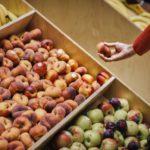Owoce w pracy i nie tylko…