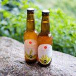 Oishi Biru czyli dobre piwo
