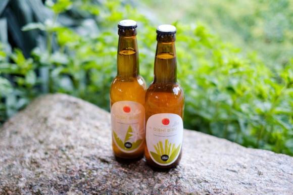 Oishi Biru czyli dobre piwo BIZNES, Firma - Największa polska franczyzowa sieć sushi barów Koku Sushi startuje z nowym menu. Absolutną w nim premierą jest kraftowe piwo z japońskiej odmiany chmielu. Opracowane zostało na specjalne zmówienie marki i ma stanowić idealną parę do sushi.