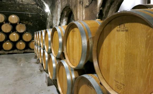 """O czym pamiętać podczas importu wina? BIZNES, Firma - Winiarze z Włoch, Francji czy Hiszpanii są otwarci na współpracę z polskimi importerami. Wartość polskiego rynku wina przekracza już 2,5 miliarda złotych rocznie, a spożycie tego trunku """"na głowę"""" statystycznego Polaka wciąż rośnie."""
