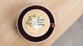 Misiek do pary – drugi lokal the White Bear Coffee w Białymstoku BIZNES, Firma - W stolicy Podlasia powstaje druga kawiarnia lubianej przez białostoczan marki the White Bear Coffee. Otwarcie już w najbliższą sobotę. W pierwszy dzień kawa za pół ceny dla wszystkich gości.